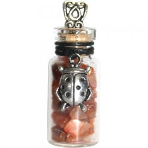 NECKLACE - Ladybug with Carnelian Glass Bottle