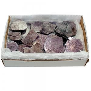 Lepidolite Purple 100gms