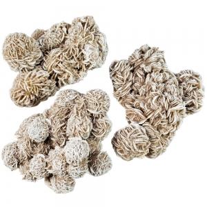 CLUSTER - DESERT ROSE 10-15cm per 100gms
