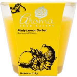 4oz Candle Minty Lemon Sorbet