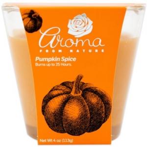 4oz Candle Pumpkin Spice